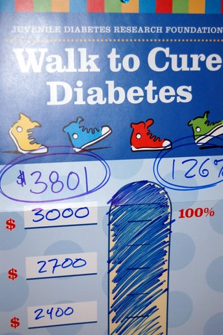 JDRF Walk 2009 Thermometer